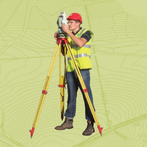 Survey_solutions_surveyor